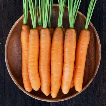 Organic Non-GMO Yaya F1 Carrot Pelleted.jpg