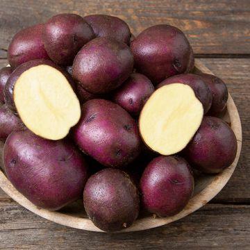 Peter Wilcox Potato