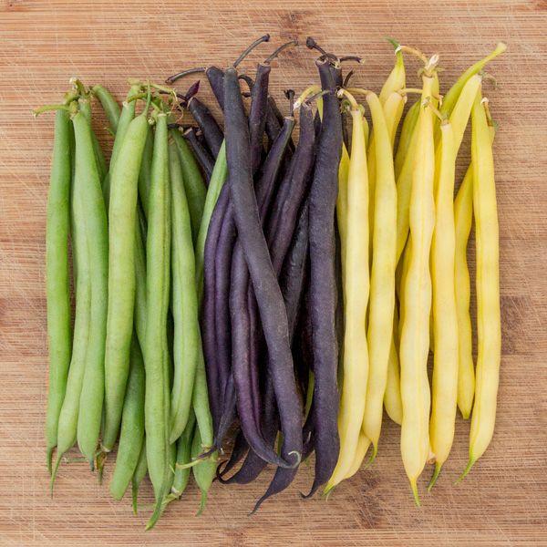 Mardi Gras Blend Bean