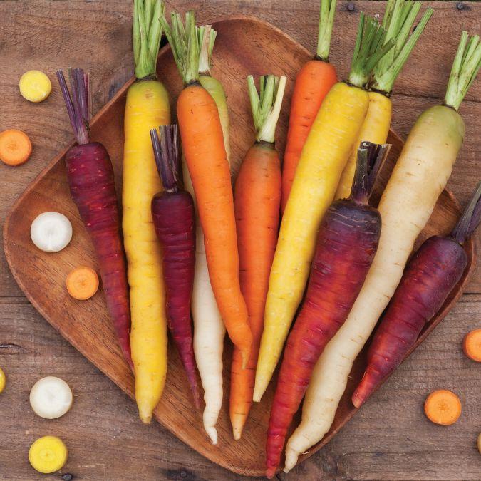Starburst Carrot Blend