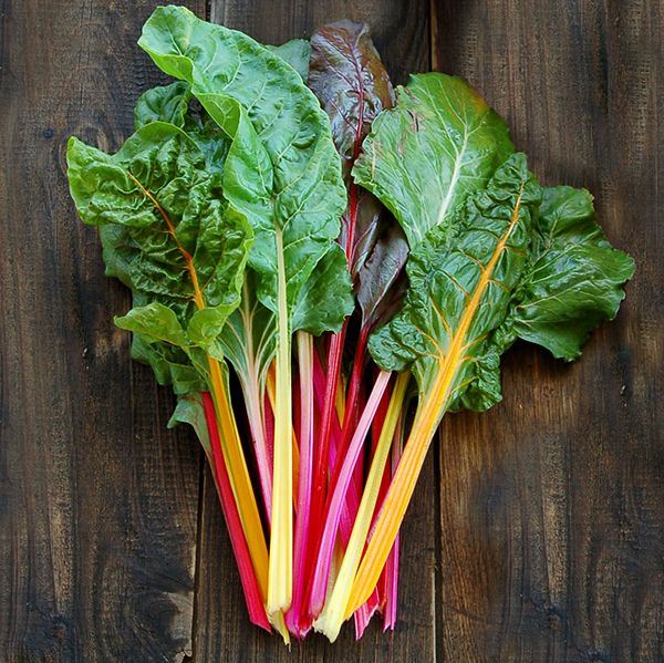 Organic Non Gmo Improved Rainbow Bl Chard