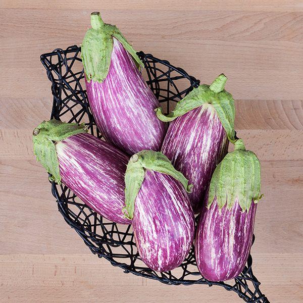 Listada diGandia Eggplant