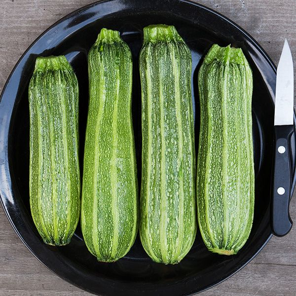 Costata Romanesco Zucchini