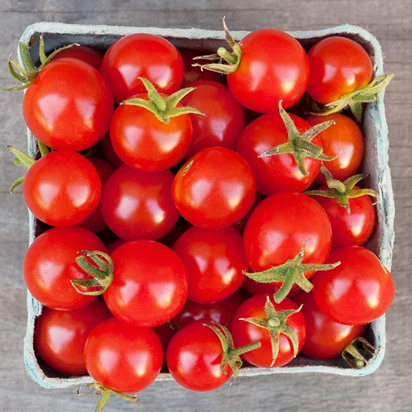 Organic Non Gmo Sweetie Cherry Tomato