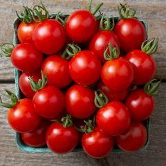 Jasper F1 Tomato