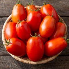 Plum Regal F1 Tomato