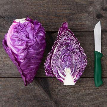 Kalibos Cabbage