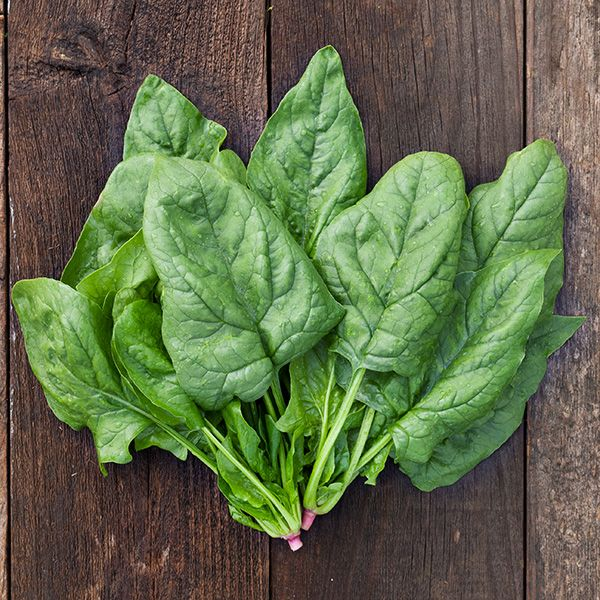 Image result for spinach images