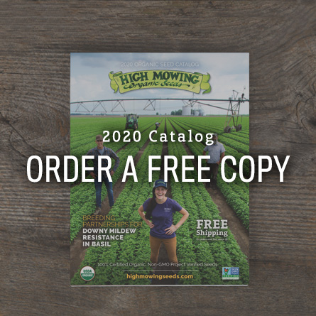 Order a free copy of the 2020 High Mowing Organic Seeds Catalog