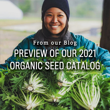 Preview of 2021 Organic Seed Catalog from High Mowing Organic Seeds blog