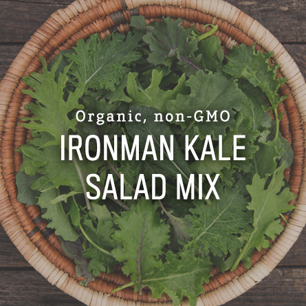 Organic Non-GMO Ironman Kale Salad Mix from High Mowing Organic Seeds