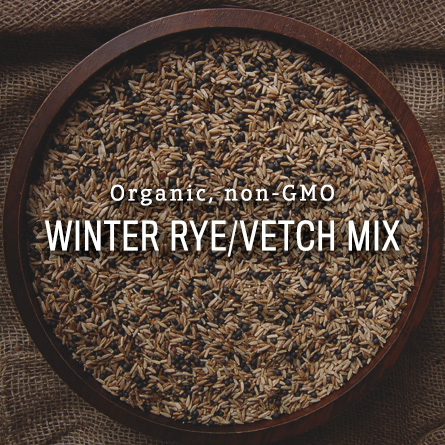 Organic Non-GMO Winter Rye Vetch Mix from High Mowing Organic Seeds