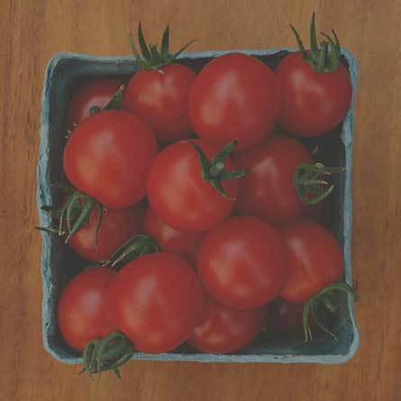 New organic non-gmo seeds
