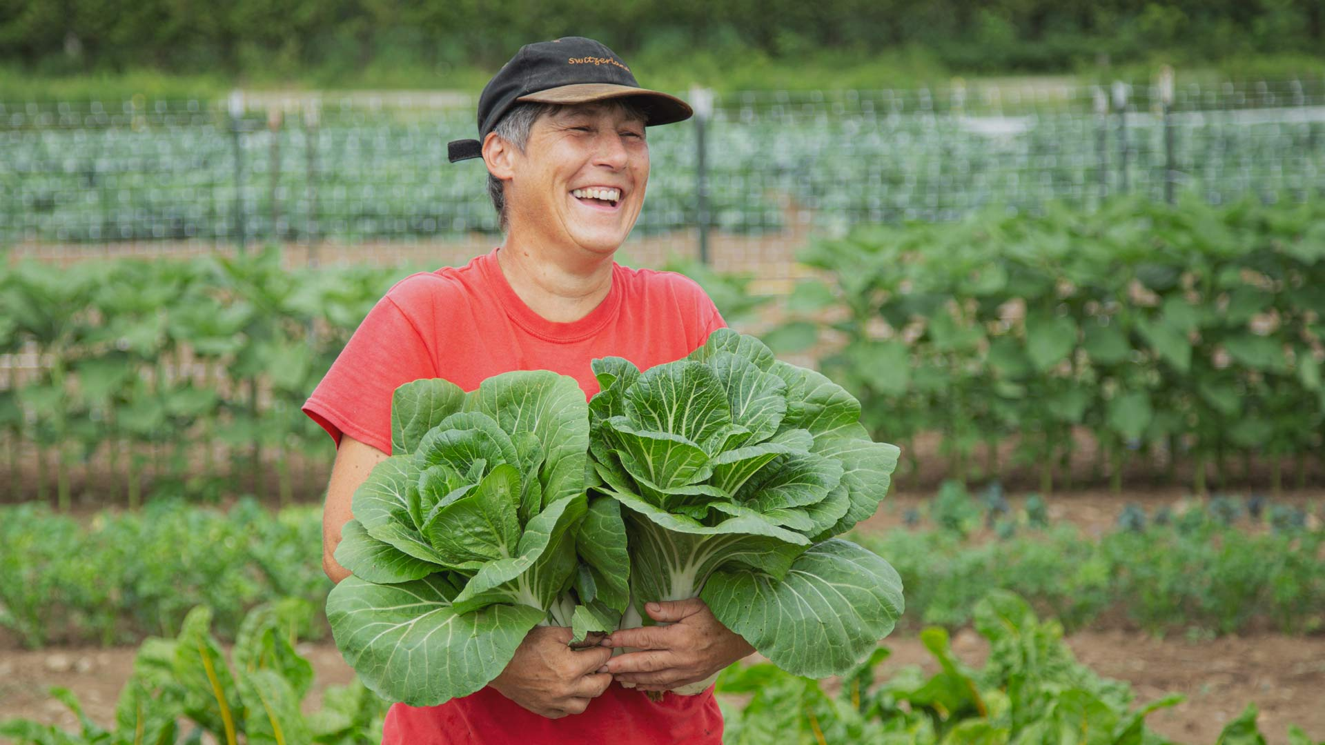 Save 10% with Community Supported Seeds Program from High Mowing Organic Seeds