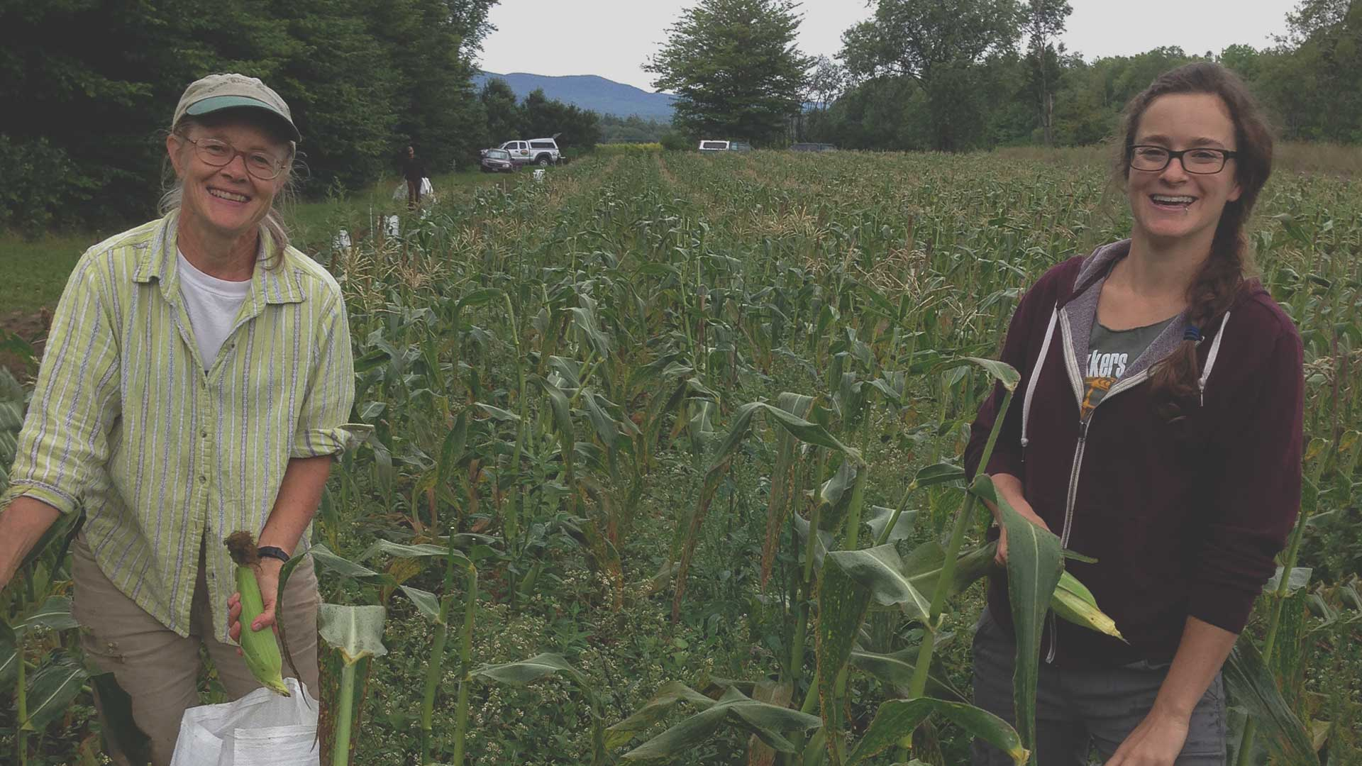 Organic Farmland in Transition from High Mowing Organic Seeds blog