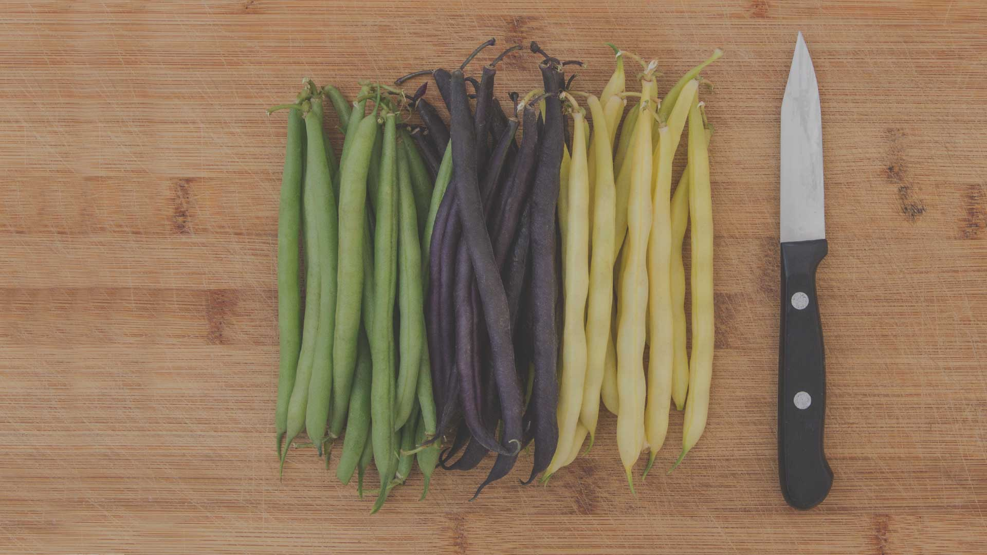 Organic Non-GMO Mardi Gras Beans from High Mowing Organic Seeds