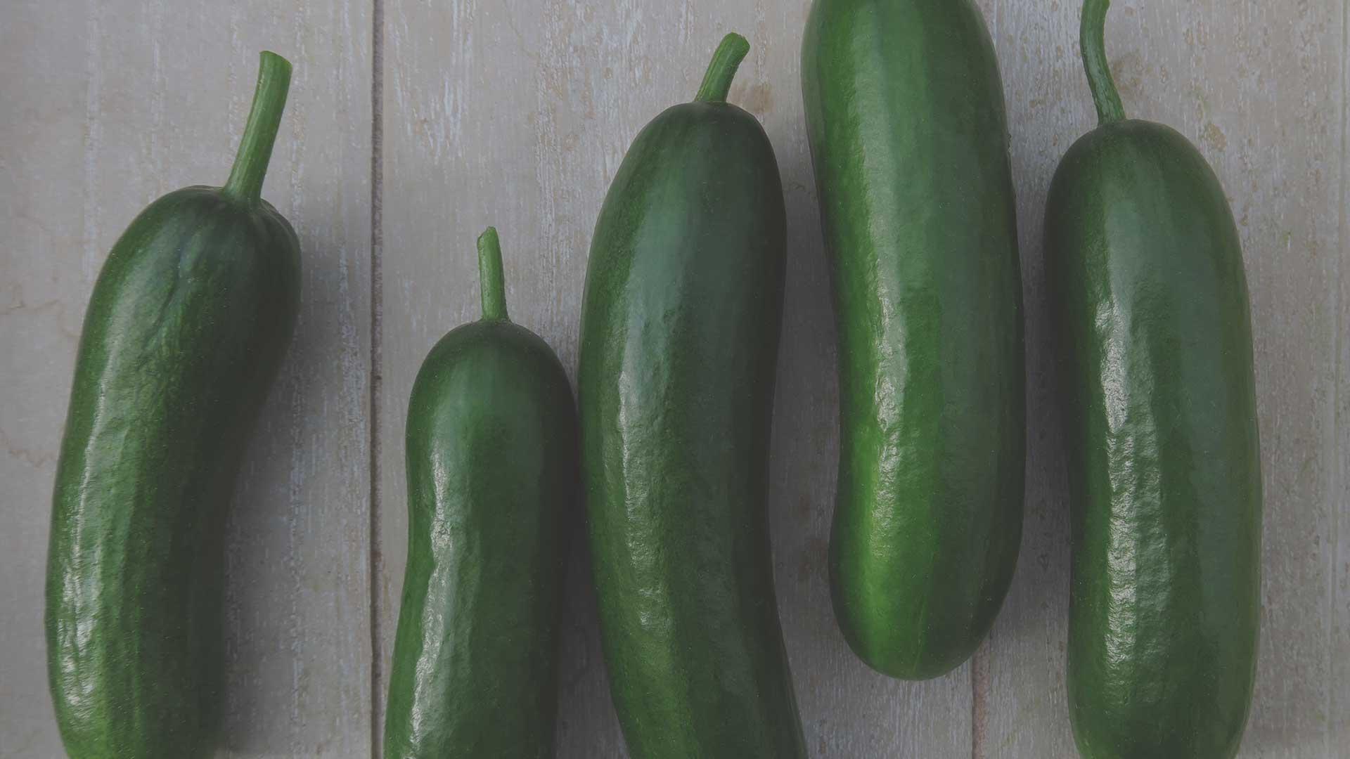 Organic Non-GMO Minime F1 Cucumber from High Mowing Organic Seeds