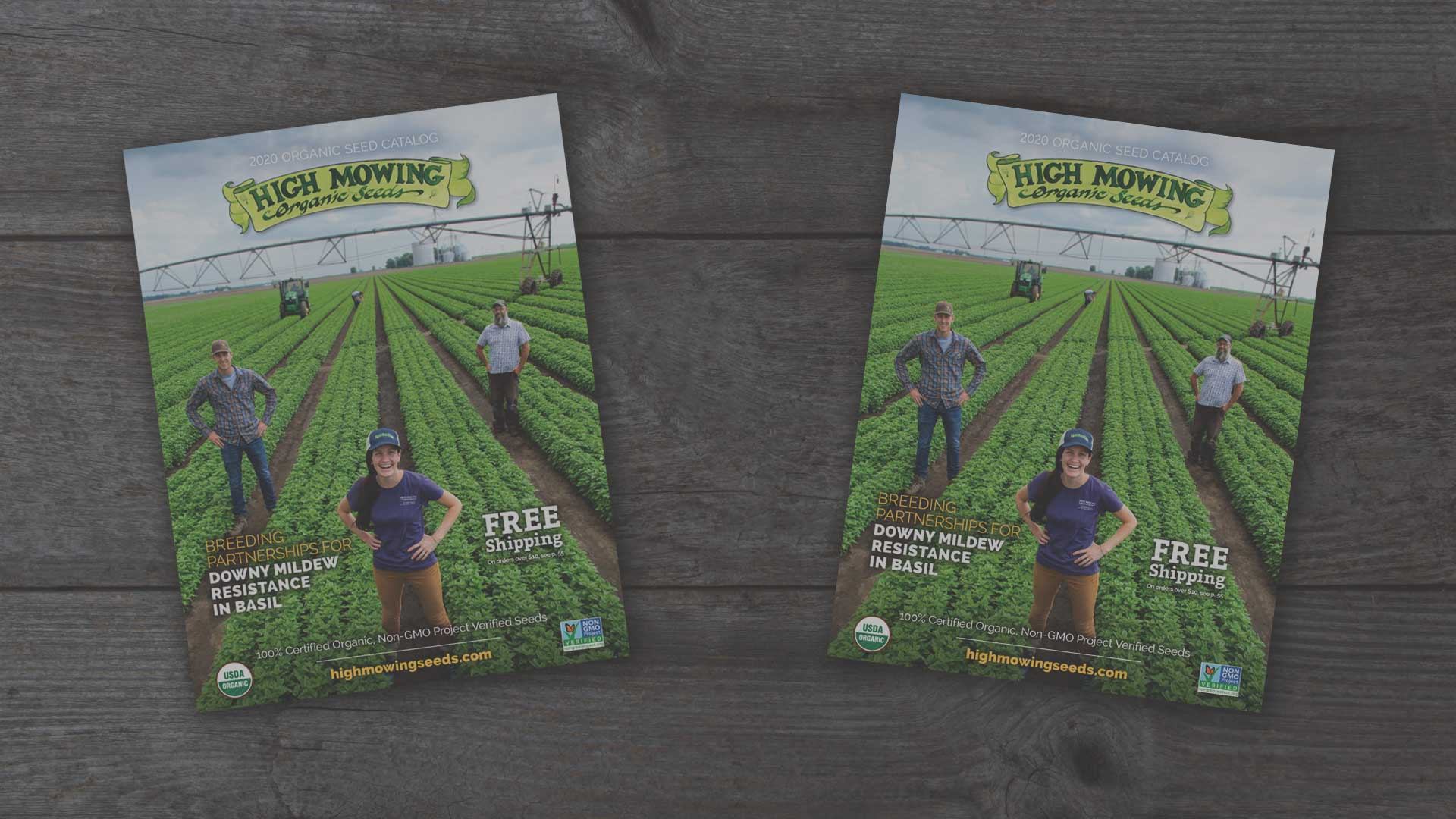 Order your 2020 Organic Non-GMO Seed Catalog from High Mowing Organic Seeds