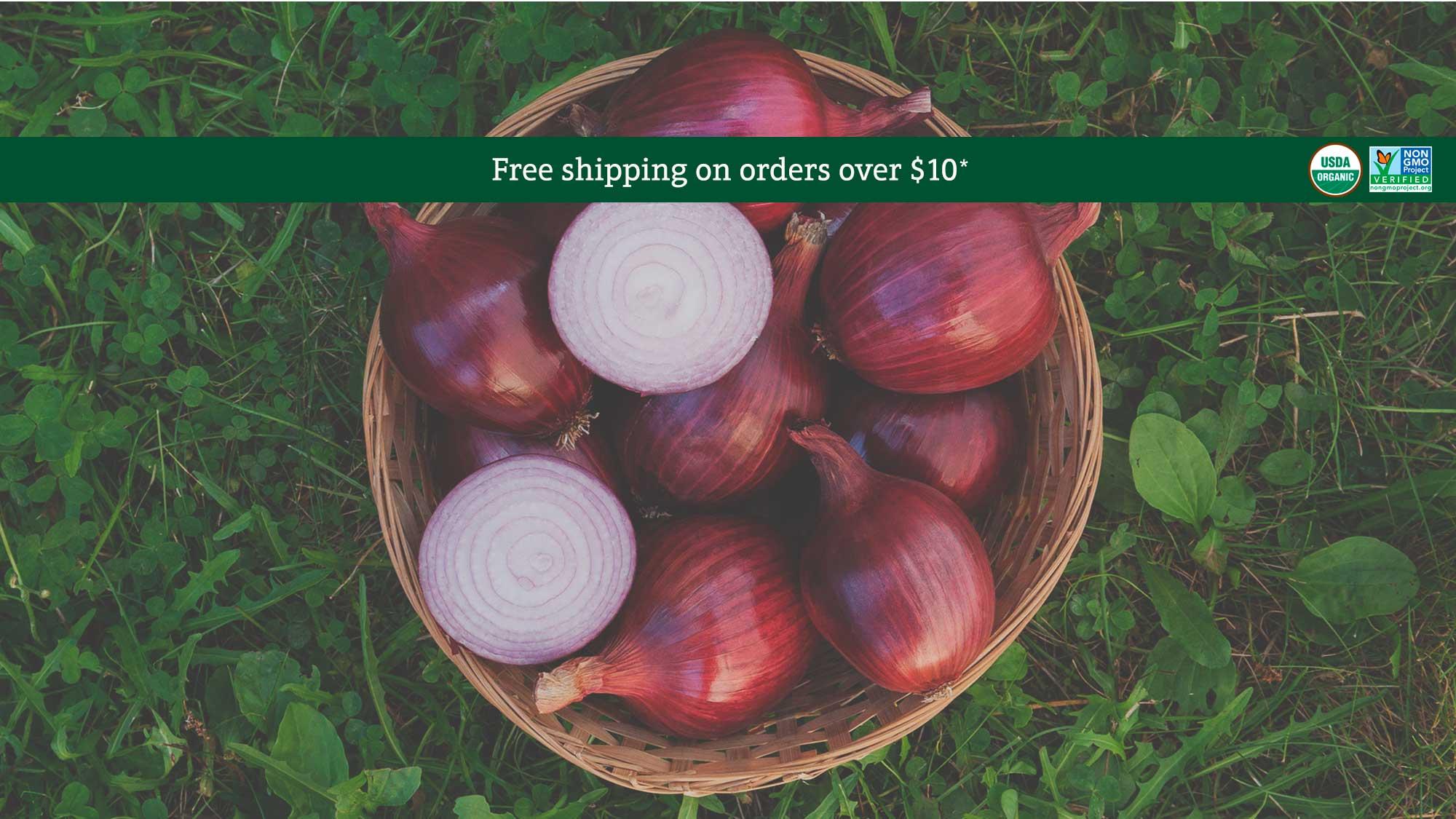 Organic red carpet onion seeds