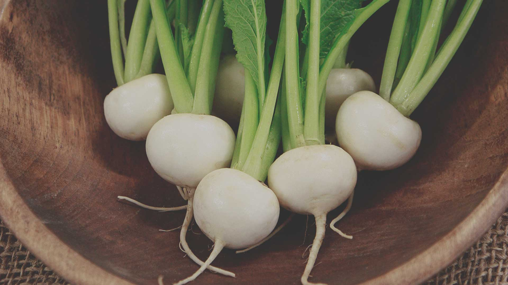 Organic Non-GMO Tokyo Market Turnip from High Mowing Organic Seeds