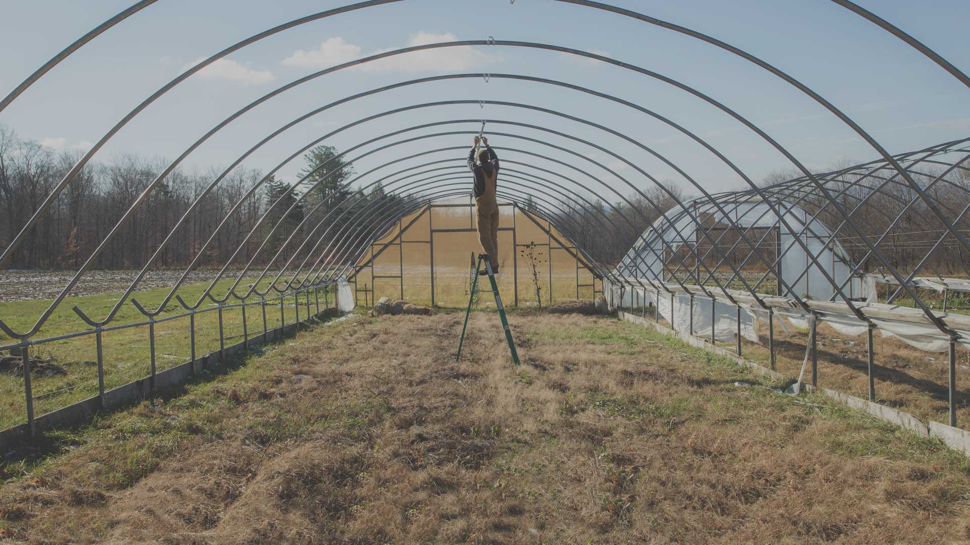How to Winterize the Farm from High Mowing Organic Seeds blog