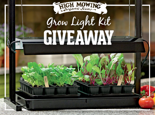 Better homes and gardens sweepstakes pat haines