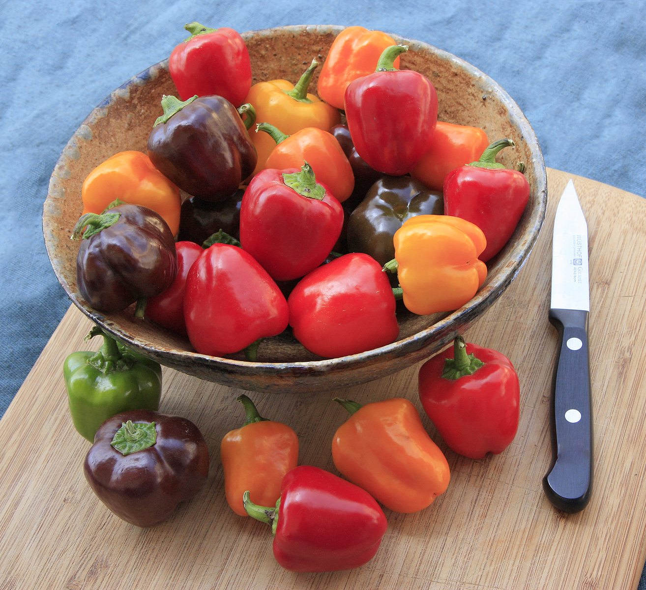 Sweet Success: How to Choose [and Grow] Tomatoes & Peppers | High